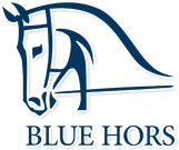 blue horse(2).png