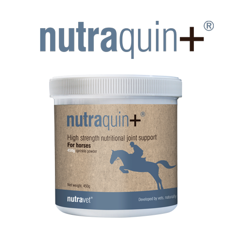 nutraquin-plus-horse.png
